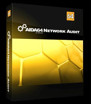 AIDA64 Network Audit